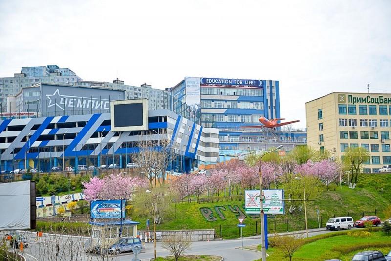 Владивостокский государственный университет экономики и сервиса - фото