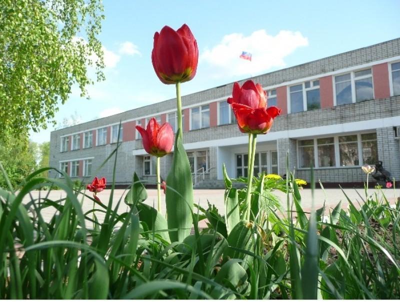 Лебедянский педагогический колледж - фото