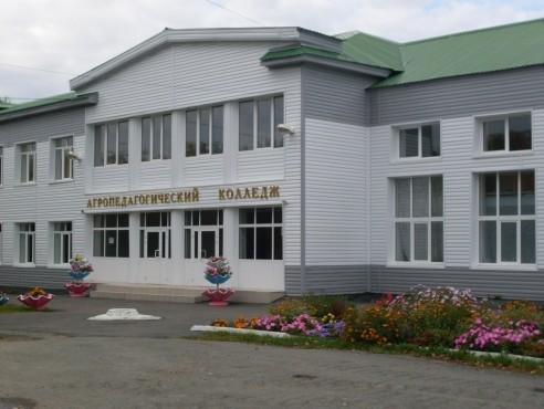 Голышмановский агропедагогический колледж - фото