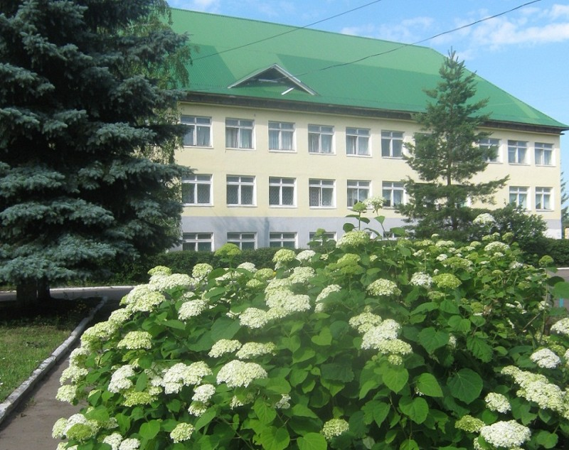 Мезенский педагогический колледж - фото