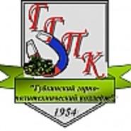 Губкинский горно-политехнический колледж - логотип