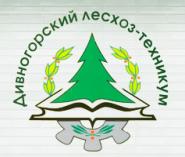 Дивногорский техникум лесных технологий - логотип